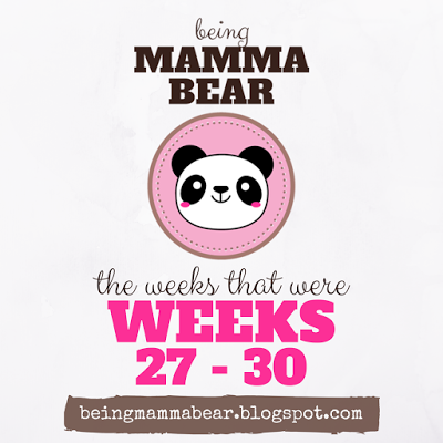 http://beingmammabear.blogspot.com/2016/07/the-weeks-that-were-weeks-27-30.html