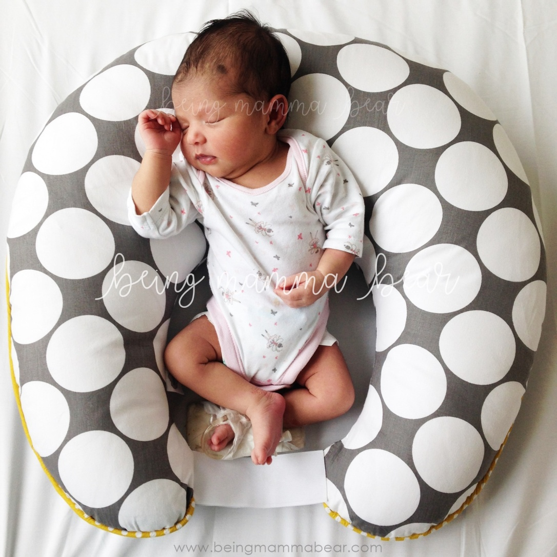 Being Mamma Bear - Getting Ready for Baby - Things you should buy - Nursing Pillow Photo Prop